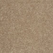 Shaw Floors All Star Weekend I 15′ Tassel 00107_E0141
