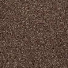 Shaw Floors All Star Weekend I 15′ Cattail 00702_E0141