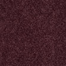 Shaw Floors All Star Weekend I 12′ Royal Purple 00902_E0143