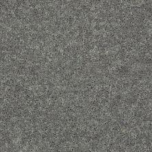 Shaw Floors All Star Weekend III 12′ Ink Spot 00501_E0145