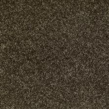 Shaw Floors Dreamin' 15′ Central Park 00301_E0150
