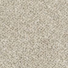 Shaw Floors Just Deal White Wash 00100_E0153