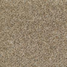 Shaw Floors Just Deal Safari Sage 00300_E0153