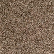 Shaw Floors Just Deal Mocha Chip 00703_E0153