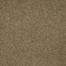 Shaw Floors Magic At Last III 12′ Celery 00342_E0204
