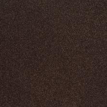 Shaw Floors Magic At Last III 12′ Dark Chocolate 00708_E0204