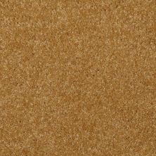 Shaw Floors Moonlight Iv Burma Gold 00202_E0209