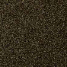 Shaw Floors Moonlight Iv Ivy Green 00304_E0209