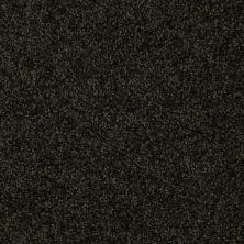 Shaw Floors Moonlight Iv Leaf Tones 00305_E0209