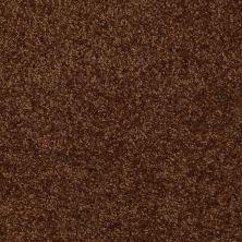 Shaw Floors Moonlight Iv Brown Sugar 00707_E0209