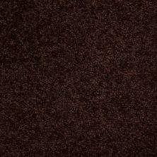 Shaw Floors Moonlight Iv Dark Chocolate 00709_E0209