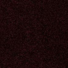 Shaw Floors Moonlight Iv Grape Juice 00901_E0209