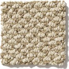 Shaw Floors Crocheted Elegance Dried Moss 00300_E0256