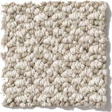 Shaw Floors Crocheted Elegance Driftwood 00500_E0256