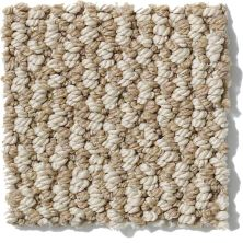 Shaw Floors Crocheted Elegance Stone Hearth 00701_E0256