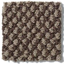 Shaw Floors Crocheted Elegance Wildwood Crest 00704_E0256