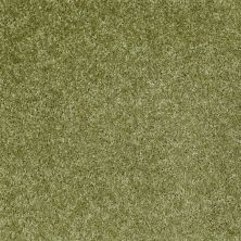 Shaw Floors Vermont (s)12′ Spring Valley 00300_E0263