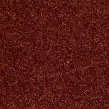 Shaw Floors Vermont (s)12′ Sienna 00600_E0263