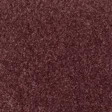 Shaw Floors Vermont (s)12′ Amethyst Sky 00900_E0263