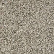 Shaw Floors Value Collections Power Buy 150 Heavenly 00100_E0269