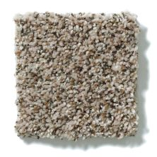 Shaw Floors Value Collections Power Buy 150 Sand Storm 00101_E0269