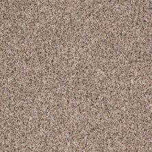 Shaw Floors Value Collections Power Buy 150 Chardonnay 00103_E0269