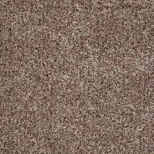 Shaw Floors Value Collections Power Buy 150 Mocha Latte 00700_E0269