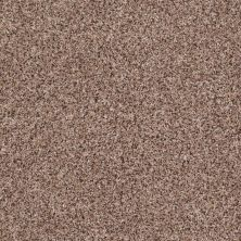 Shaw Floors Value Collections Power Buy 150 Wheat Field 00701_E0269