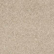 Shaw Floors Thunder Struck (s) Brandon Beige 00110_E0272