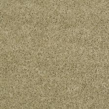 Shaw Floors Thunder Struck (s) Shagreen 00310_E0272