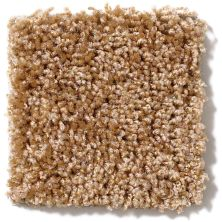 Shaw Floors Vitalize (s) 12′ Corn Silk 00200_E0276