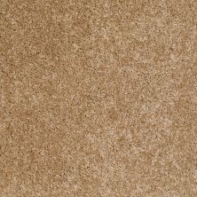 Shaw Floors Vitalize (s) 12′ Wicker 00201_E0276