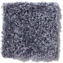 Shaw Floors Vitalize (s) 12′ Indigo 00400_E0276