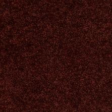 Shaw Floors Vitalize (s) 12′ Dark Cherry 00801_E0276