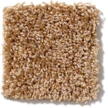 Shaw Floors Vitalize (s) 15′ Corn Silk 00200_E0277
