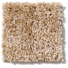 Shaw Floors Vitalize (s) 15′ Wicker 00201_E0277