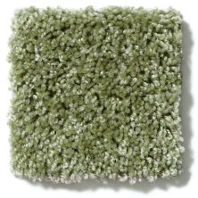 Shaw Floors Vitalize (s) 15′ Ivy Gate 00300_E0277