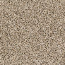 Shaw Floors Vitalize (b) Cocoon 00712_E0278