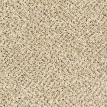 Shaw Floors Value Fleck 25 Point Beach 00200_E0280