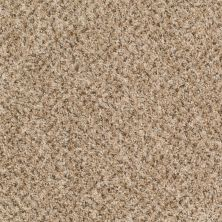 Shaw Floors Value Fleck 25 Havana Tan 00700_E0280