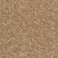 Shaw Floors Value Fleck 25 Grazing Fawn 00701_E0280