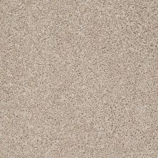 Shaw Floors Value Collections Go For It Net Agate 00102_E0323