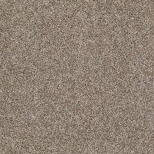 Shaw Floors Value Collections Go For It Net Olivine 00710_E0323