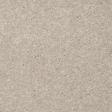 Shaw Floors Stainmaster Flooring Center Whisper Creek (s) Chenille 00103_E0335