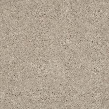 Shaw Floors Stainmaster Flooring Center Whisper Creek (s) Bisque 00106_E0335