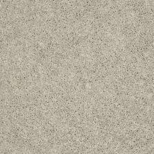 Shaw Floors Stainmaster Flooring Center Whisper Creek (s) Dove 00116_E0335