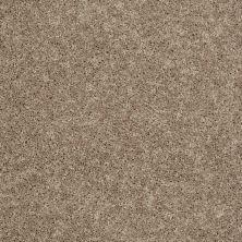 Shaw Floors Stainmaster Flooring Center Whisper Creek (s) Dried Herb 00303_E0335