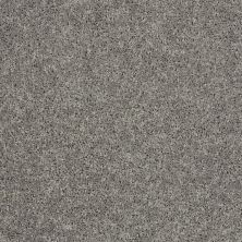 Shaw Floors Stainmaster Flooring Center Whisper Creek (s) Shark Fin 00504_E0335