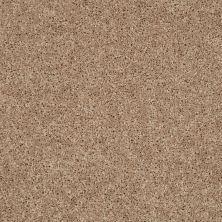 Shaw Floors Stainmaster Flooring Center Whisper Creek (s) Biscotti 00700_E0335
