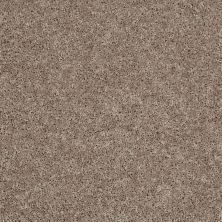 Shaw Floors Stainmaster Flooring Center Whisper Creek (s) Warm Taupe 00711_E0335